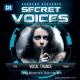 Sandero-Secret-Voices-38